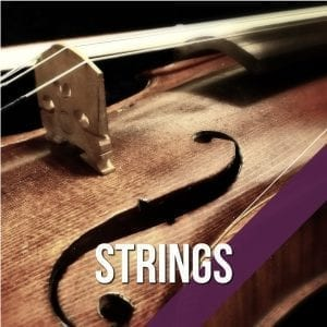 Folk instrument strings