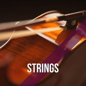 Violin and Cello strings